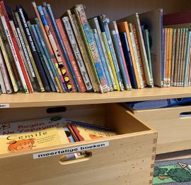 How can we read multilingual books to our children in preschool?